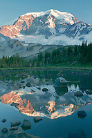 Mt. Rainier<br />