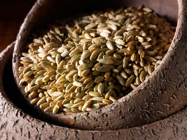 Organic Rye Grains -