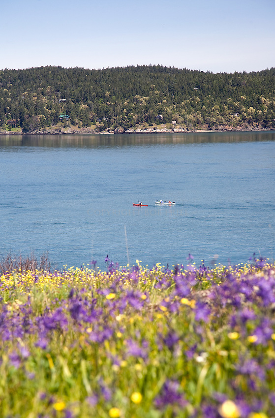 Yellow Island in the San Juan Islands, WA. Kept as reserve by The Nature Conservancy