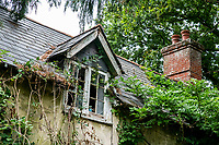 BNPS.co.uk (01202 558833)<br /> Pic: MaxWillcock/BNPS<br /> <br /> Pictured: The front of Grasshopper Cottage.<br /> <br /> An abandoned cottage that is covered by undergrowth and looks like something out of a horror film has sold for a whopping £430,000.<br /> <br /> The derelict property, called Grasshopper Cottage, had a valuation of £275,000 before it went up for sale at auction.<br /> <br /> But due to the current state of the property market where demand far outstrips supply, interest and bidding in the 150-year-old cottage took off.