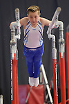 Disability Gymnastics British Championships 2015