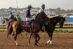 """DEL MAR, CA  AUGUST 18: #8 Two Thirty Five, ridden by Franklin Ceballos, in the post parade of the $1 Million TVG Pacific Classic (Grade l) """"Win and You're in Classic Division"""" on August 18, 2018 at Del Mar Thoroughbred Club in Del Mar, CA. (Photo by Casey Phillips/Eclipse Sportswire/Getty Images"""