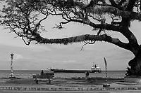 Dumaguete<br /> , Philippines<br /> , 2017