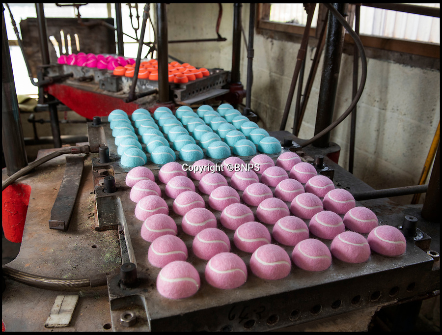 BNPS.co.uk (01202 558833)<br /> Pic: PhilYeomans/BNPS<br /> <br /> The cloth 'eights' are then glued and heat molded on to the rubber ball.<br /> <br /> Price of Bath was set up by her grandfather Joseph in the 1930's and after WW2 employed 120 people churning out 84,000 balls a week - nowadays it's the last tennis ball maker in the western world, and produces a much more modest 6000 balls a week from raw rubber from Malaysia to finished product.<br /> <br /> Louise's father Derek, who invented the rubber tiles used on nuclear powered submarines as well as running the family business, still works full time in the dickensian factory at the age of 88.