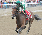 Artemis Agrotera (no. 1), ridden by Rajiv Maragh and trained by Michael Hushion, wins the 36th running of the grade 1 Ballerina Stakes for fillies and mares three years old and upward on August 23, 2014 at Saratoga Race Course in Saratoga Springs, New York.  (Bob Mayberger/Eclipse Sportswire)