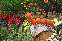 Raupe, Raupen, Schmetterlingsraupe als Bastelei im Garten, Gartendekoration, Gartendekorationen, Gartendeko, Deko, Dekoration, garden decoration