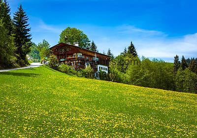 Oesterreich; Tirol; bei Fieberbrunn: altes Tiroler Bauernhaus in der Nähe des Lauchsee   Austria, Tyrol, near Fieberbrunn: old Tyrolean farmhouse near moorlake Lauchsee
