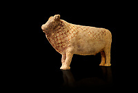 Minoan bull shaped rhython libation vessel decorated with a net pattern , Pseira  1500-1400 BC BC, Heraklion Archaeological  Museum, black background.<br /> <br /> The net pattern over the bull and its cut horns signify that it is a wild bull intended for sacrifice.