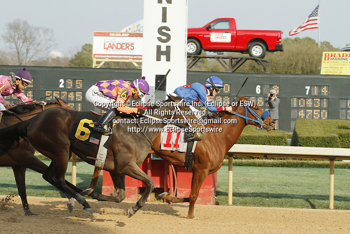 #6 Euphrosyne with jockey Ricardo Santana, Jr. winning after an objection with the #11 Sugar Shock during the running of the Honeybee Stakes (Grade III) at Oaklawn Park in Hot Springs, Arkansas-USA on March 8, 2014. (Credit Image: © Justin Manning/Eclipse/ZUMAPRESS.com)