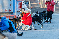 A group of volunteer veterinarians looks over Charley Benja dogs at the 2016 Iditarod Pre-race vet check in Wasilla, Alaska. March 02, 2016 <br /> <br /> © Jeff Schultz/SchultzPhoto.com ALL RIGHTS RESERVED<br /> DO NOT REPRODUCE WITHOUT PERMISSION