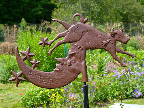 The cow jumped over the moon, Community garden, Yarmouth Maine