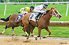 Tough Weather winning at Delaware Park on 6/16/16