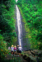 The trail to Manoa Falls ends in a spectacular view of one of Oahu's favorite attractions for hikers. Located in Manoa Valley, Central Oahu.