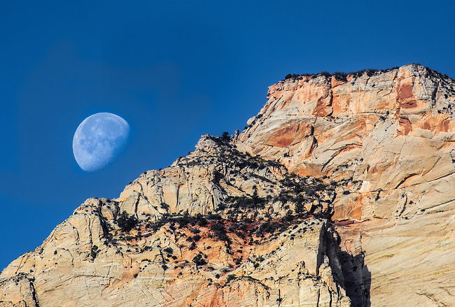 The setting moon appears over Zion National Park, Utah