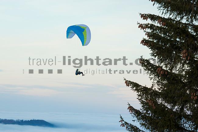 Planken, Rheintal, Rhine-valley, Liechtenstein.<br /> Foto: Paul J. Trummer