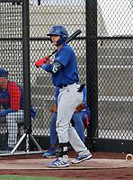 Scott McKeon - 2021 Arizona League Cubs (Bill Mitchell)