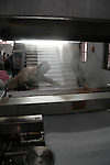 Expensive and advanced compacting machines are used to stabilise the garment colour. Popy's Printing unit Tirupur, Tamilnadu. After lifting of quota system in textile export on 1st january 2005. Tirupur has become the biggest foreign currency earning town of India.