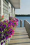 colorful summer annuals, spill from window boxes mounted on the exterior of a boathouse along Michigan's Lake Huron shoreline in this classic, midwestern summer scene