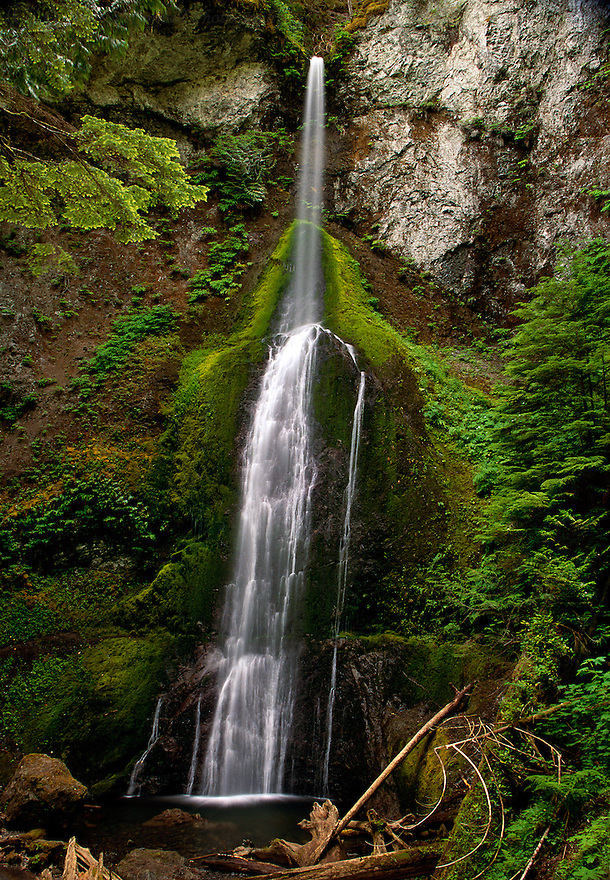 """""""Nature's Lace""""<br /> Olympic National Park, Washington<br /> 2003<br /> <br /> Marymere Falls were unlike most of the falls we had seen throughout Washington.  Many of the falls were powerful torrents of water reminding us of heavy cotton or wool, but Marymere Falls is very delicate. The falls descended from a narrow opening in the rocks to a tranquil pool.  It was a delicate stream through the mosses much like the fragile threads of lace."""
