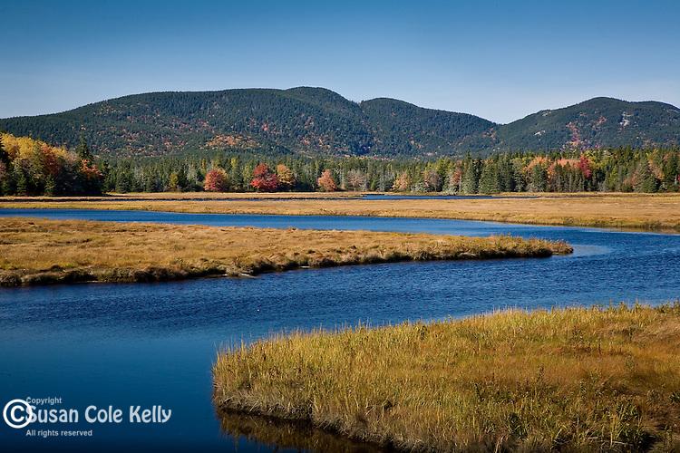 Autumn color at Bass Harbor Marsh, Acadia National Park, ME