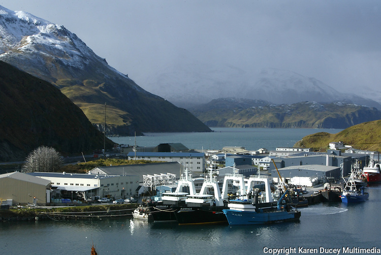 10/23/03 crab NWS::  A view from Unalaska Island of the Unisea processing plant in Dutch Harbor, AK after red king crab season with Iliuliuk Harbor in the foreground and Unalaska Bay behind it.  The front 3 boats are trawlers; the boats behind them are all crabbers.