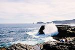 Image Ref: CA977<br /> Location: Bushrangers Bay Track<br /> Date of Shot: 28.09.19