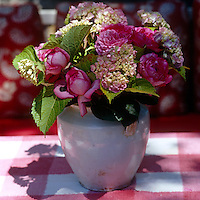 Red and white gingham makes a cheerful background for an antique vase of pink roses and hydrangeas
