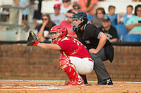 Johnson City Cardinals catcher Chris Chinea (22) sets a target as home plate umpire Ryan Barneycastle looks on during the game against the Bristol Pirates at Howard Johnson Field at Cardinal Park on July 6, 2015 in Johnson City, Tennessee.  The Cardinals defeated the Pirates 8-2 in game two of a double-header. (Brian Westerholt/Four Seam Images)