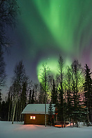 Log cabin in a boreal forest in Fairbanks, Alaska with green northern lights overhead