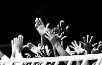 Crowd Cheering at the FINA Airweave Swimming World Cup in Doha - Qatar<br /> FINA Airweave Swimming World Cup 2015<br /> Doha, Qatar 2015  <br /> Nov.2 nd - 3 rd<br /> Day3 - Nov  3rd finals<br /> Photo G. Scala/Deepbluemedia/Insidefoto