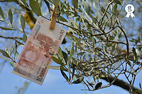 Ten Euros banknote on tree (Licence this image exclusively with Getty: http://www.gettyimages.com/detail/81867343 )
