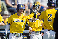 Michigan Wolverines shortstop Michael Brdar (9) celebrates with teammate Jonathan Engelmann (2) after scoring against the Illinois Fighting Illini during the NCAA baseball game on April 8, 2017 at Ray Fisher Stadium in Ann Arbor, Michigan. Michigan defeated Illinois 7-0. (Andrew Woolley/Four Seam Images)