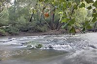 The Slate River in Buckingham County, VA. Photo/Andrew Shurtleff