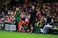 Martin O'Neill manager of Republic of Ireland watches on during the UEFA Nations League B match between Wales and Ireland at Cardiff City Stadium in Cardiff, Wales, UK.September 6, 2018