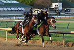 LOUISVILLE, KY -APR 27: Kentucky Derby hopeful Magnum Moon (inside near rail) works in company with Maraud for the Kentucky Derby at Churchill Downs, Louisville, Kentucky. (Photo by Mary M. Meek/Eclipse Sportswire/Getty Images)