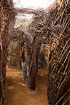"May 8, 2015. Chapel Hill, North Carolina.<br />  Local sculptor Patrick Dougherty installed his work ""Homegrown"" in the main yard of the North Carolina Botanical Gardens. The North Carolina Botanical Gardens encompass acres of plant habitats native to the state, as well nature trails for walking and recreation. <br />  Outsiders tend to lump Chapel Hill with nearby Durham, but the more sensible pairing is with Carrboro, the adjacent town that was once a mere offshoot known as West End. Even today the transition from Chapel Hill, anchored by North Carolina''s flagship public university, into downtown Carrboro is virtually seamless."