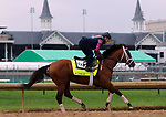 LOUISVILLE, KY -APR 25: Kentucky Derby hopeful Audible trains for the Kentucky Derby at Churchill Downs, Louisville, Kentucky. (Photo by Mary M. Meek/Eclipse Sportswire/Getty Images)