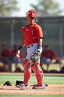Los Angeles Angels of Anaheim catcher Jeyson Sanchez (16) during an Instructional League game against the Colorado Rockies on October 6, 2016 at the Tempe Diablo Stadium Complex in Tempe, Arizona.  (Mike Janes/Four Seam Images)