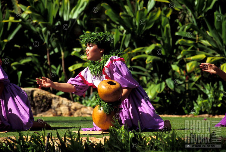 EDITORIAL ONLY. Hula performer with an ipuheke, gourd instrument at Lanikuhonua, Oahu