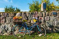 Altes Fahrrad mit Plastikblumen, Neugrimnitz, Angermünde, Uckermark, Brandenburg, Deutschland