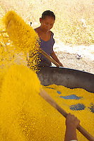 Índios Wapixana trabalham com a produção de farinha que após ralada È torrada em grandes bandejas de cobre.Roraima, Brasil.06/12/2004Foto Paulo Santos/Interfoto