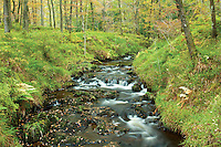 The Allt a' Mhangan, near Aberfoyle, Loch Lomond and the Trossachs National Park, Stirlingshire