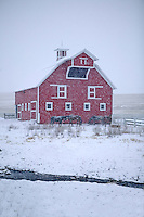 Barn with snow and horses. Neaqr Joseph, Oregon
