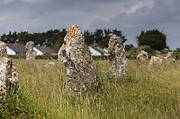 France, Bretagne, (29), Finistère, Presqu'île de Crozon, Camaret-sur-Mer: Alignements de Lagatjar