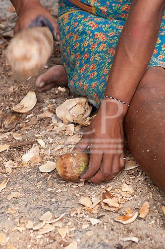 Aldeia Baú, Para State, Brazil. Kayapo woman breaking open a babassu nut using a wooden mallet.