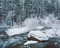 Winter scene on the Santiam River in the Cascade Range; Willamette National Forest, OR