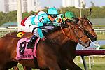 HALLANDALE BEACH, FL - FEB 10:  Elysea's World #8 with jockey Javier Castellano on board wins the Suwannee River Stakes GIII, at Gulfstream Park on February 10, 2018 in Hallandale Beach, Florida. (Photo by Liz Lamont/Eclipse Sportswire/Getty Images)