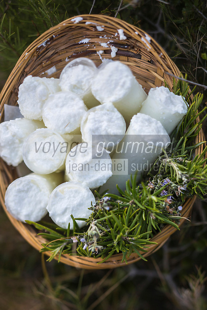 France, Bouches-du-Rhône (13),env de  Marseille, Le Rove:  véritable Brousse de Chêvre du Rove , pur chèvre  d'André Gouiran, éleveur de chèvre du Rove et producteur de brousse du Rove  //  France, Bouches du Rhone, near Marseille: Le Rove , the Real Rove Brousse, pure goat cheese  by André Gouiran, Rove goat breeder and producer of  of  the Real Rove Brousse, pure goat cheese  <br /> AUTO N 2013-150