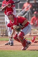 Los Angeles Angels catcher Erven Roper (10) during a Minor League Spring Training game against the Cincinnati Reds at the Cincinnati Reds Training Complex on March 15, 2018 in Goodyear, Arizona. (Zachary Lucy/Four Seam Images)