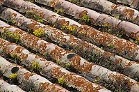 """Europe/France/Provence-Alpes-Côte d'Azur/84/Vaucluse/Crillon-le-Brave: Relais et château """"Hostellerie de Crillon-le-Brave"""" - Détail de la toiture"""